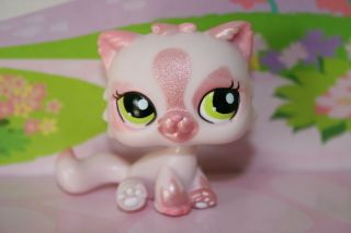 NEW RETIRED LITTLEST PET SHOP PINK SHIMMER KITTY CAT #1083 FREE HOUSE