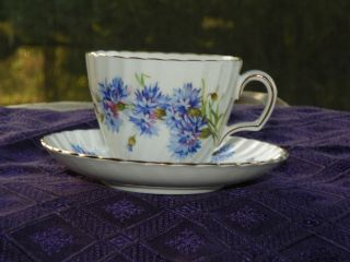 Adderley fine bone china No H487 gold rimmed cup & saucer blue corn