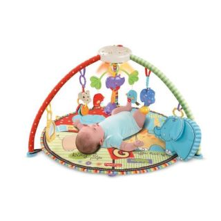 Price Deluxe Musical Mobile Baby Gym Playmant Activity Play Mat Toy