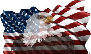 American flag eagle vinyl graphic decal motorhome rv mural FLAWED