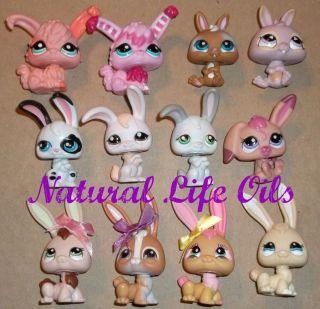 12 LPS BUNNY RABBIT PETS ONLY Lot~BABY~ANGORA~FLOPPY EARS~Littlest Pet