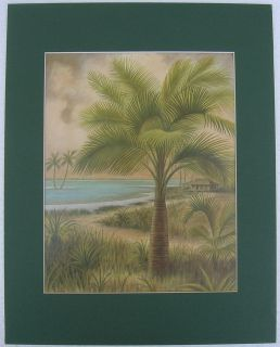 Palm Trees Tropical Ocean Matted Country Picture Print Interior Home