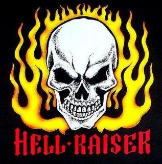 BIKER HOT ROD HELL RAISER SKULL IN FLAMES T SHIRT DS48