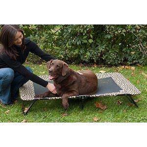 Elevated Pet Cot Dog Cat Bed Capacity 100 lbs XL Sage or Tan Bone