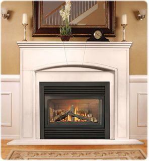 gas fireplace direct vent in Fireplaces