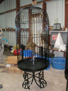 wrought iron bird cages in Cages
