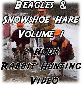 RABBIT HUNTING Video DVD ~ BEAGLES/Snowsh​oe Hare Vol. 1
