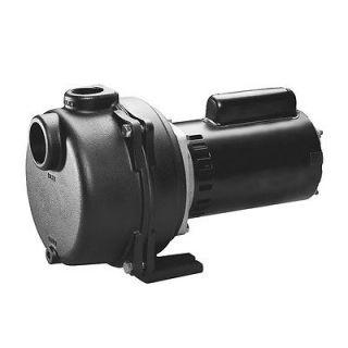 WAYNE 1 1/2 HP Lawn Sprinkler Irrigation Pump WLS150