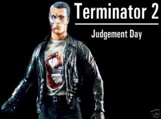 Movie Terminator T 800 Arnold Figure Vinyl Model Kit
