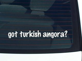 got turkish angora? CAT CATS FUNNY DECAL STICKER VINYL WALL CAR