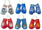 Official Merchandise Car Accessories Mini Boxing Gloves Football Gifts