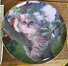Out On A Limb Kitty Cat Decorative Plate Franklin Mint Fine