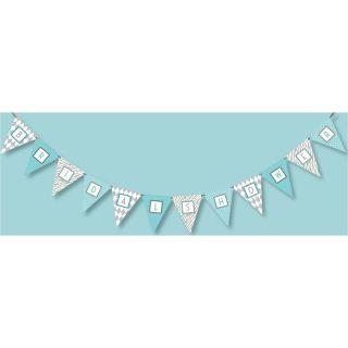 12 Doc Milo Tiffany Blue & Grey Zebra Bridal Shower Party Banner