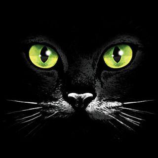 Cat Face Green Eyes Cat Shirt Cat T Shirts Hoodie Kitty T Shirt Tee