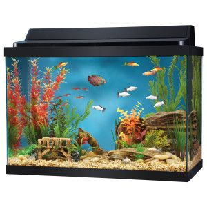10 gallon aquarium hood top cover fluorescent strip light for 10 gallon fish tank hood
