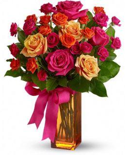 Telefloras Sunset Kiss Flowers, Telefloras Sunset Kiss Flower