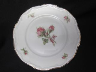 Hertel Jacob Porzellan Bavaria Germany MOSS ROSE Bread & Butter Plate