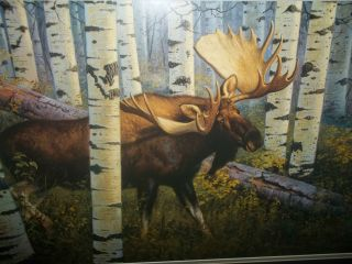 Signed Litho Print Bull Moose in Birch Hayden Lambson LE Numbered