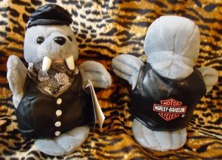 Harley Davidson Bean Bag Plush Stuffed Walrus Tusk