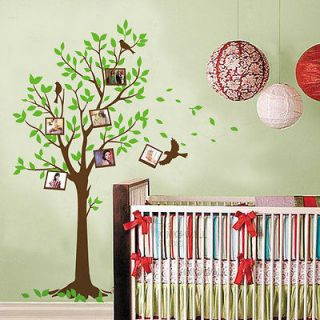 New Photo Frame Tree Birds Wall Stickers Decals Decor Art Mutural