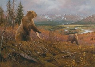 50058 Grizzly Remains Bear 550 Pc Puzzle Artist Hayden Lambson W/Free