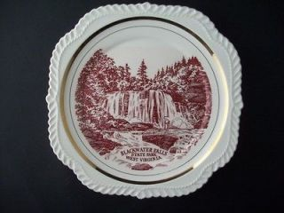 black water falls state park west virginia plate nice time