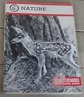 Nature, Boy Scout Merit Badge Series, Vintage Boy Scout Booklet, 1988