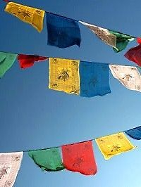 50 x 8.2 inch Tibetan Buddhist COTTON PRAYER FLAGS Hand Made in