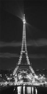 Paris France EIFFEL TOWER~ Removable Art WALL DECAL Sticker~PARISIAN