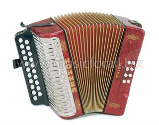 Erica CF 3000 Button Accordion Accordian Case Straps WorldShip
