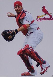 Yadier Molina Mini FATHEAD + St. Louis Cardinals Logo Official Vinyl