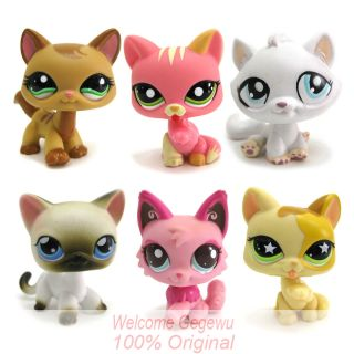 Littlest Pet Shop Cat set Animals Figures Loose Collection girl toys