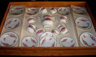 Antique German Childs Porcelain Tea Set in Original Fitted Wood Box