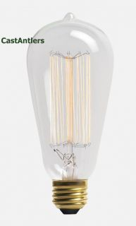 Six 6 Edison Light Bulb Free Priority Shipping Antique Retro 60 Watt