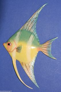 Gigantic 12 Tropical Fish Aquarium Bath Sealife Netscapes Nautical