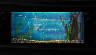 Large Plasma Wall Mount Fish Tank Aquarium Hanging Art