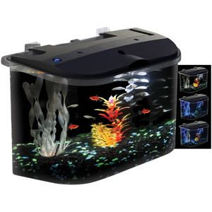 Aquarius AQ15005 PanaView Aquarium Kit with 3 Color LED Lighting, 5