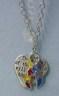 Autism Asperger Color Puzzle PC Necklace Earring Set