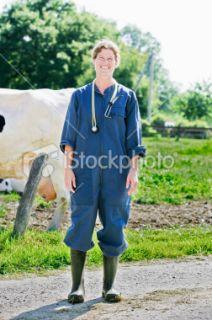 Agricult, Vétérinaire, Vache, Ferme, Femmes  Stock Photo