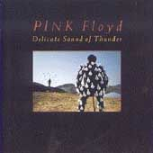 Delicate Sound of Thunder by Pink Floyd CD, Nov 1988, 2 Discs