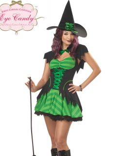 Sexy Green Womens Hocus Pocus Witch Plus Size Halloween Costume Dress