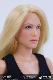 Triad Toys 1 6 Scale Amber Blond Hair Female Head Sculpt