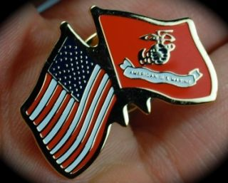 SALE Gold US American Flag Marine Flag Lapel Pin Military Not Just an