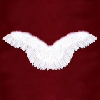 Large White Feather Angel Wings Adult Photo props 40x16 halloween