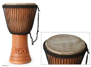 Visual Balance Master Artisan Assante Hand Carved Djembe Drum Africa