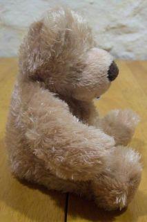 Mary Meyer Baby Bennett Bear Plush Stuffed Animal New