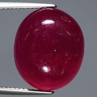 Gem 19 28ct 16x13 5mm Oval Pigeon Blood Red Ruby Madagascar