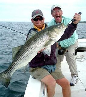 Daiichi 100 Fly Tying Hooks Saltwater x Point X452 4 0