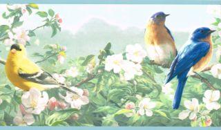 Eastern Blue Bird Cardinal Plus Finch Country Blue Edge Wallpaper