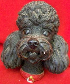 Bossons Congleton England Black French Poodle Dog Head